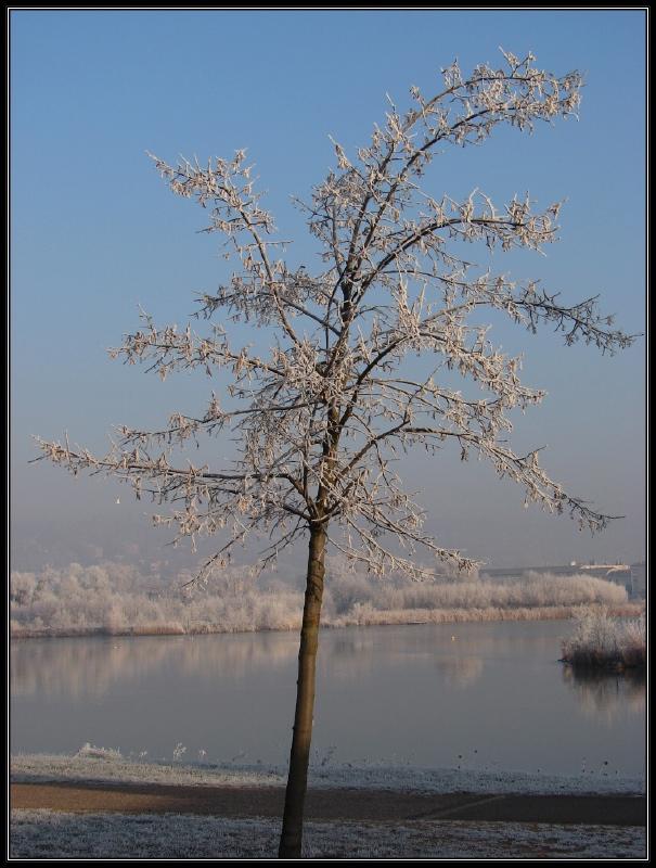 http://nancynancy.free.fr/2007/12/42.jpg