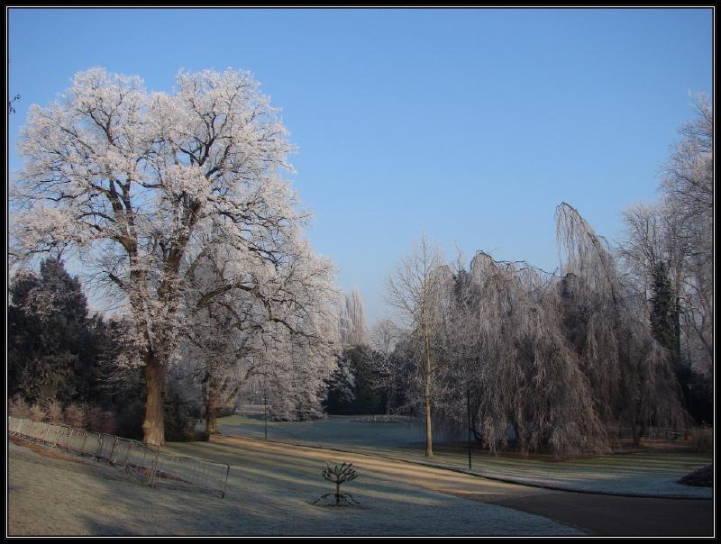 http://nancynancy.free.fr/2007/12/46.jpg